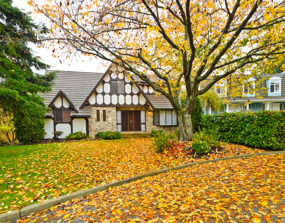 Front yard in the fall with orange leaves on the ground